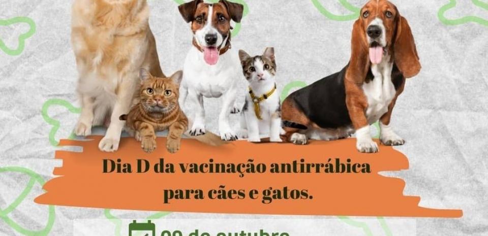 """Dia """"D"""" da vacinação antirrábica para cães e gatos"""